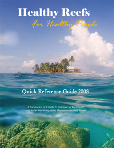 2008-Quick-Indicators-Guide-cover