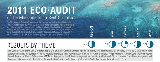 Ecoaudit-poster-cover