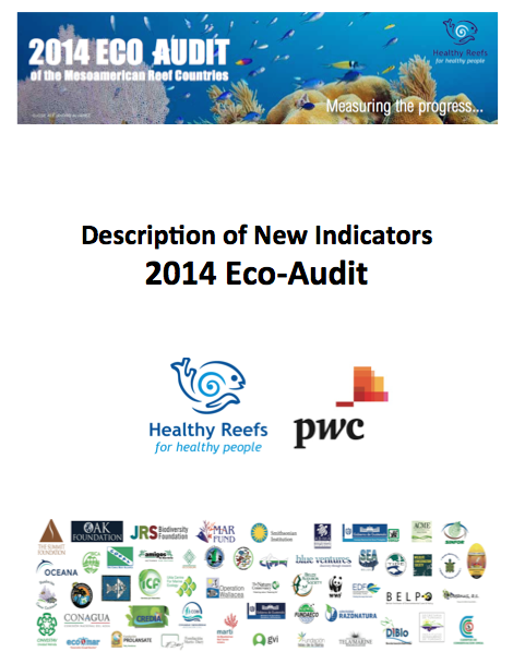 P New 2014 Eco Audit Indicators