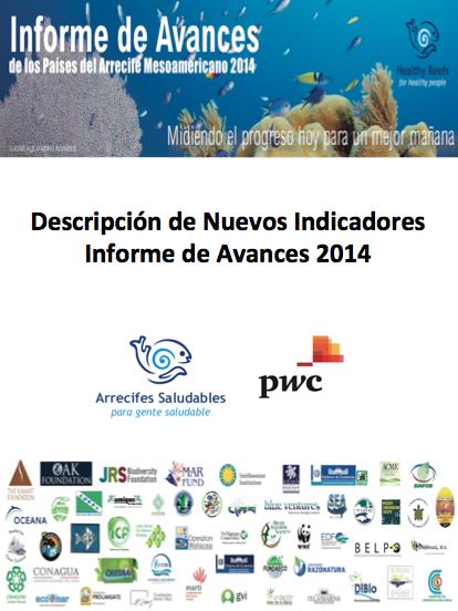 P Nuevos Indicadores Informe de Avances 2014