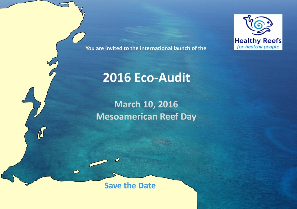eco audit There is no standardized name for these reports, therefore a large number of possible variants of such report names can occur (the body shop calls it values report, general electric – citizenship report, goodyear – corporate responsibility report (eco audit brief).