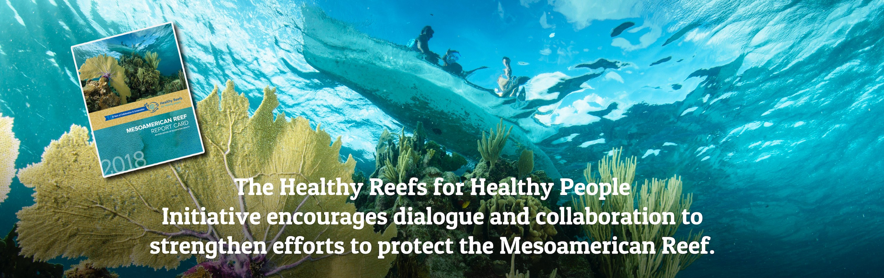 healthy reefs healthy reefs for healthy people