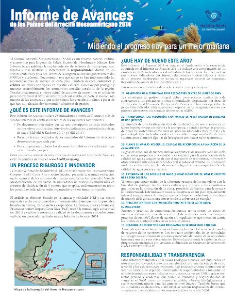 P Trifolio Informe de Avances 2014
